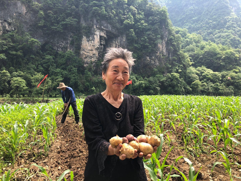 电商平台联动农户,打造苏宁特色扶贫模式