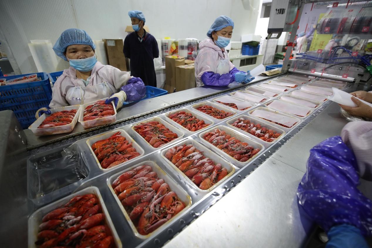 C:\Users\hanni.jp\Desktop\小龙虾直播\5月30日,湖北省石首市一家小龙虾生产加工园里,工人准备对小龙虾进行封装。 (2).JPG