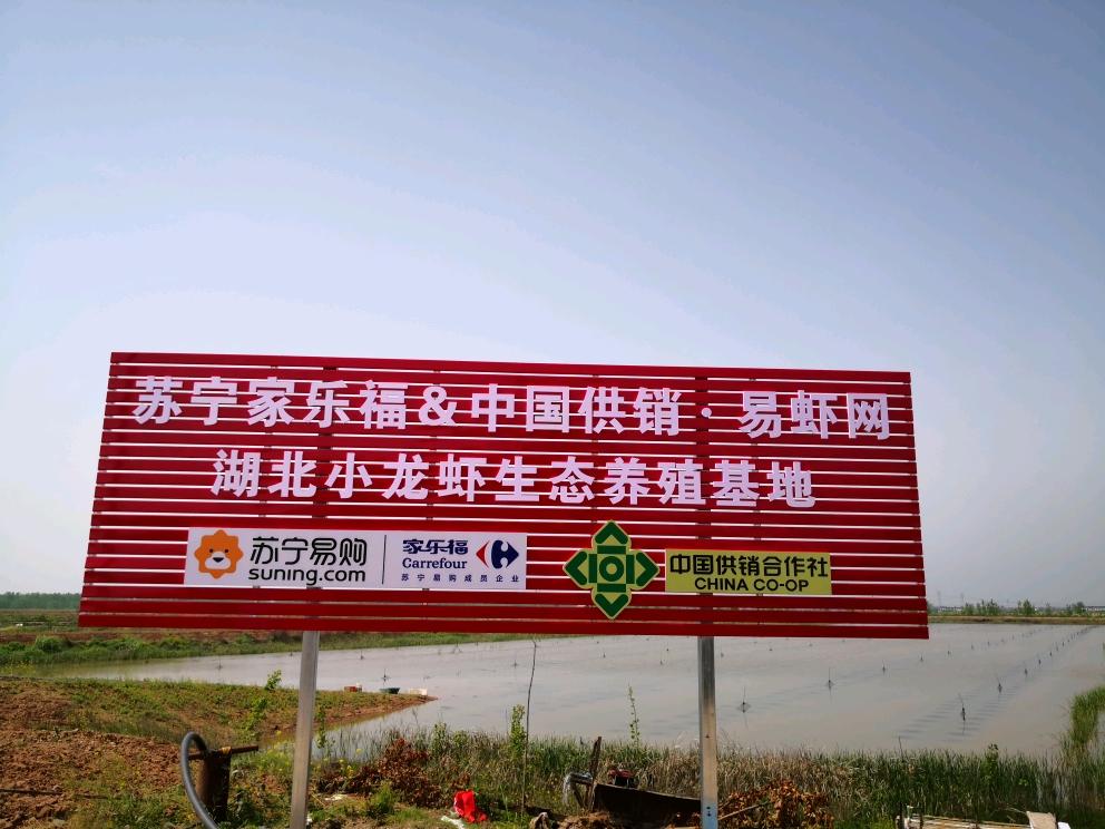 为湖北拼单,苏宁超市秭归橙热卖,家乐福17日上架荆州小龙虾