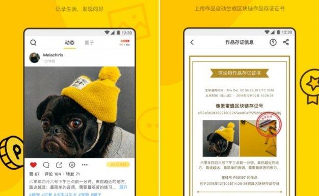 像素蜜蜂:打造原创内容社区,区块链助力版权保护